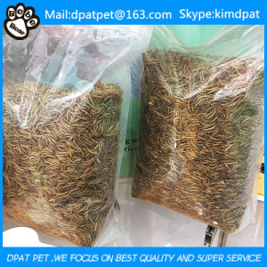 Bird & Fish Food Microwave Dried Mealworms pictures & photos