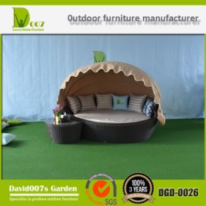 Wilson and Fisher Garden Furniture Outdoor Daybed with Canopy pictures & photos