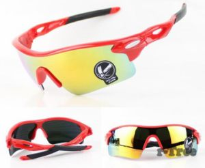 UV400 Travel Coating Sunglasses Goggles in High Quality pictures & photos