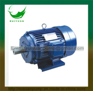 Y Series 750W 1HP Copper Wire Three-Phase Asynchronous Motor pictures & photos