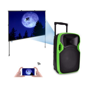 Competitive 12 Inches Plastic LED Projection PRO Audio with Multi-Function pictures & photos