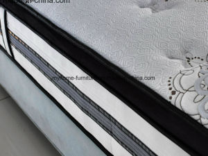 The Most Popular China Wholesale Euro Top Pocket Spring Mattress pictures & photos