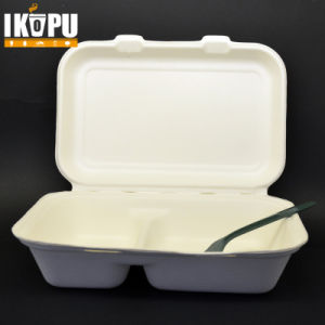 Biodegradable Disposable Raw Pulp Paper Lun⪞ H Bo≃ pictures & photos