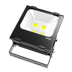 IP65 Waterproof Outdoor 100W LED Basketball Court Flood Light pictures & photos