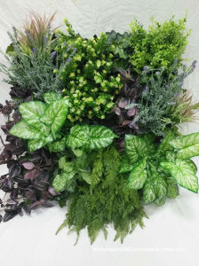 2017 Outdoor Use Indoor Use Artificial Green Wall for Decoration pictures & photos