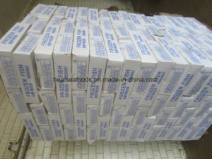 Frozen Pacific Mackerel Fish 150-200g From China Mackerel Factory pictures & photos