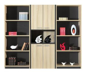 Modern Combination Design Office Document Cabinet pictures & photos