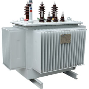 10kv Oil-Immersed Distribution Transformer pictures & photos