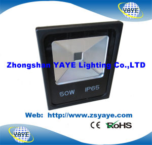 Yaye 18 High Quality Low Price Ce/RoHS/ UL COB 30W Outdoor LED Flood Light / 30W Outdoor COB LED Floodlight pictures & photos