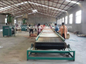 Plywood Veneer Forming Machine Production Line pictures & photos