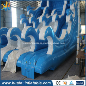 Hot Sale Giant Inflatable Water Slide /Outdoor Wet & Dry Slide / Exciting Slide for Amusement Park pictures & photos