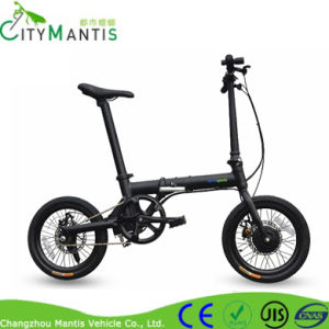36V/5.2ah Built-in Lithium Battery Electric Bike pictures & photos
