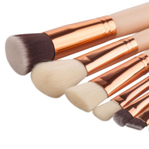 New Hot Sale 8PCS Makeup Brush Set Private Label Accept pictures & photos