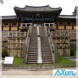 International Express From Nanjing to Korea Inchon Busan pictures & photos