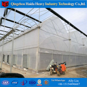 Agriculture Multi-Span Tempered Glass Greenhouse with Hydroponics Stsyem pictures & photos
