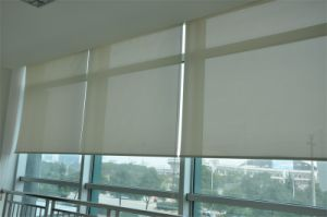 Blackout Sun Shade Curtain Plastic Chain Pull Double-Layer Roller Blinds Exterior Blinds for Windows pictures & photos