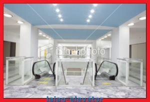 Good Quality and Competitive Price for Indoor Escalator pictures & photos
