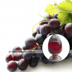 Grape Skin Extract - Grape Skin Red Color pictures & photos