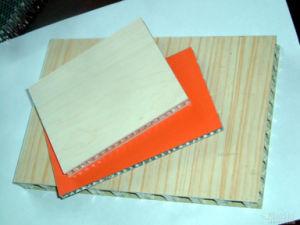 HPL Honeycomb Panel
