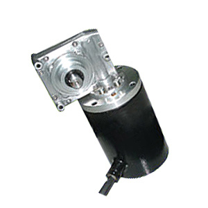 Worm Gear Motor Can Short-Time Under Water pictures & photos