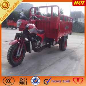 Heavy & Strong Cargo Tricycle pictures & photos