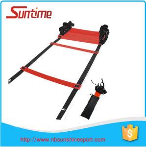 Professional Speed Agility Ladder, Agility Ladder, Agility Ladder for Soccer Speed Football