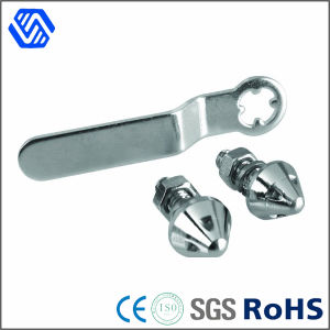 Cone Head Stainless Steel Theftproof Bolt pictures & photos