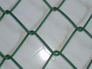 Chain Link Netting Security Fencing Supply Factory pictures & photos