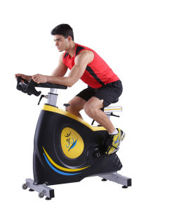 New Arrival Swing Spin Bike Fb-5818 pictures & photos