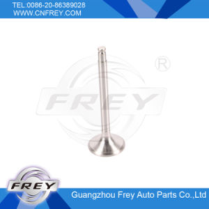 W201W123 W124 W460 for Exhaust Valve OEM No. 1020500327 pictures & photos
