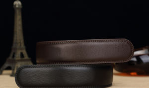 Men Leather Belts in High Quality (GF-160414) pictures & photos
