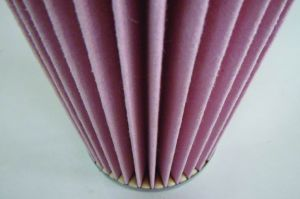 Htr Nomex Heat Resistance Air Cartridge Filter pictures & photos