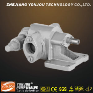 Lube Oil Transfer Pump -- Two Helical Gears pictures & photos