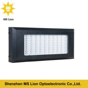 Indoor Growing Light 120*3W LED Grow Light for Greenhouse pictures & photos