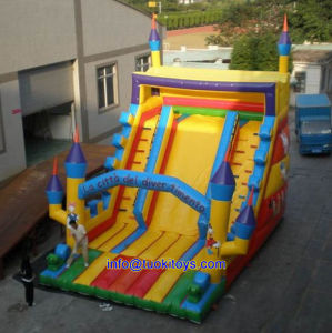 Hot Sale Inflatable Slide for Rental Business (B005) pictures & photos