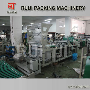 Automatic Plastic Handle Bag Making Machine with Handle Hole pictures & photos