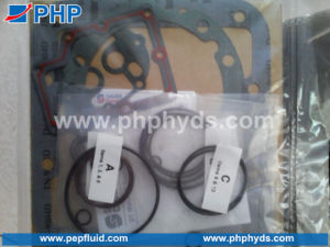 Sauer Danfoss PV21 22 23 24 Complete Seal Kit Shaft Seal with O Ring and Gasket pictures & photos