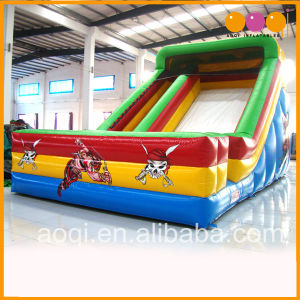 Cartoon Inflatable Standard Slide for Kid (AQ953-3) pictures & photos