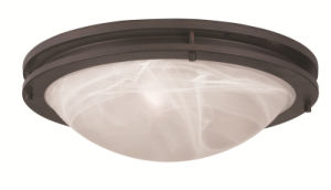 Moderm Simplism Style Ceiling Light (7059-07)
