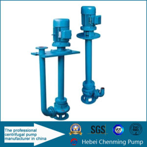 Electric Industry Vertical Cast Iron Single-Stage Submerged Water Pump pictures & photos
