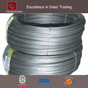 Stainless Steel Pickling Wire From 6.00mm to 0.5mm (CZ-W67) pictures & photos
