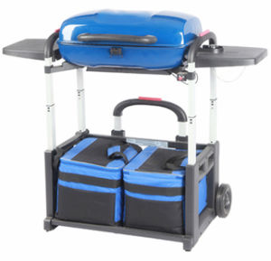 Portable Foldable Gas BBQ Grill for Travel Camping pictures & photos