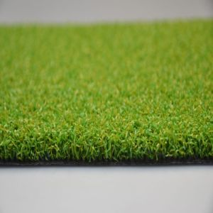 Putting Green Synthetic Natural Lawn for Mini Golf (GFP) pictures & photos
