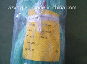 Low Price High Quality Nylon Multifilament Net (1) 0.15mm-0.25mm pictures & photos