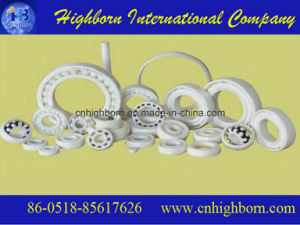 Many Types Precision White Zirconia Ceramic Bearing pictures & photos