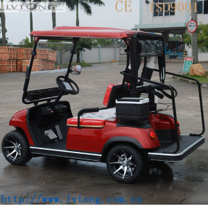 Best 2 Passengers Electric Buggy pictures & photos