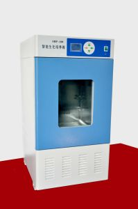 Biochemical Incubator, Mold Incubator- (SHP-160) pictures & photos