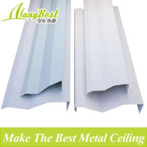 False Aluminum Olecranon Screen Ceiling pictures & photos