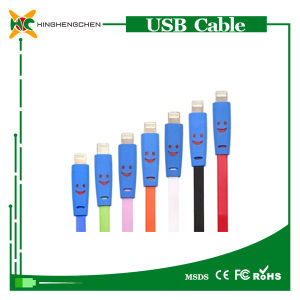 Cheap USB Charging Cable with LED Lights for iPhone 5 pictures & photos