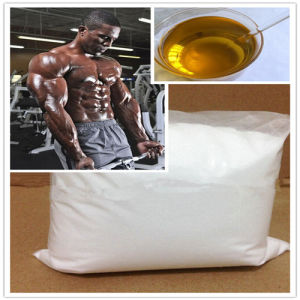 Supply Muscle Building Steroids Testosterone Undecanoate CAS 5949-44-0 pictures & photos